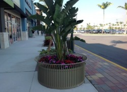 Palm Beach Marketplace at the Outlets