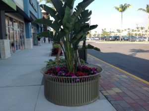 The Marketplace at Palm Beach Outlets