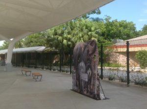 Miami Metro Zoo Entry
