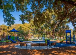 View Delaney Park Project