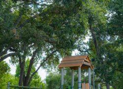 Blossom Lake Park